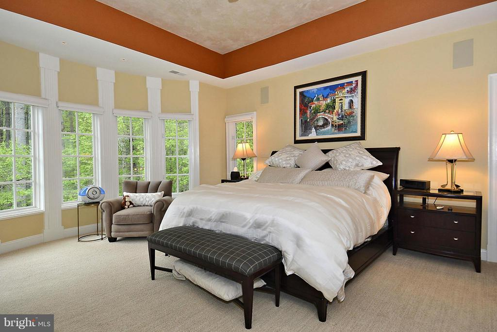 Master Bedroom - 1105 LEIGH MILL RD, GREAT FALLS