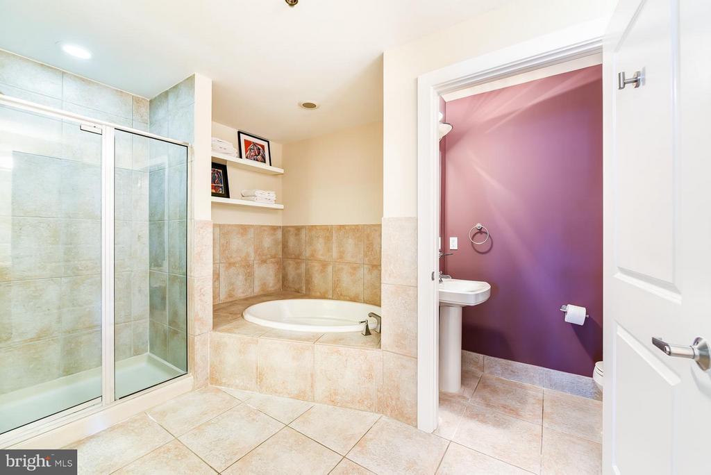 Bath (Master) - 2328 CHAMPLAIN ST NW #401, WASHINGTON