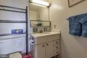 Bath (Master) - 3001 VEAZEY TER NW #1517, WASHINGTON