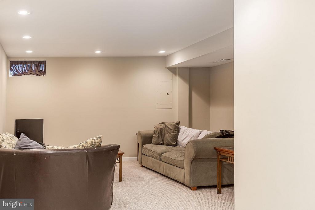 Basement - 5233 GLEN MEADOW RD, CENTREVILLE