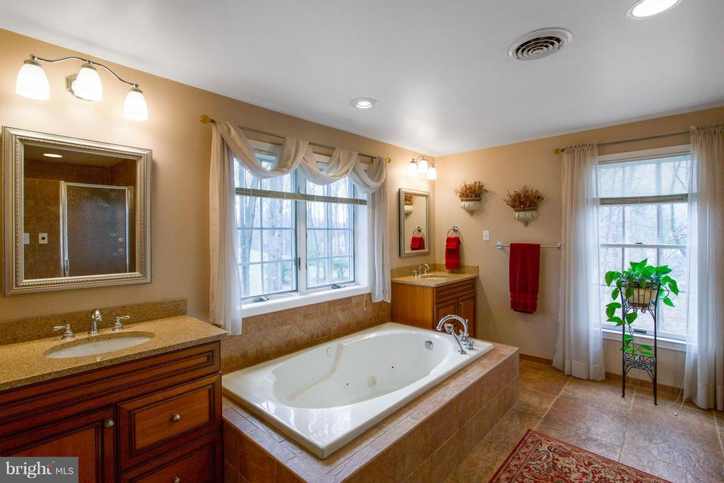 Jacuzzi tub, separate shower, double sinks - 13300 FOXDEN DR, ROCKVILLE