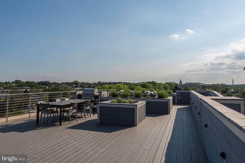 Rooftop with Monument and Capitol Views! - 1350 MARYLAND AVE NE #410, WASHINGTON