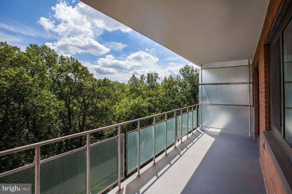 Large Balcony - 4201 CATHEDRAL AVE NW #910E, WASHINGTON