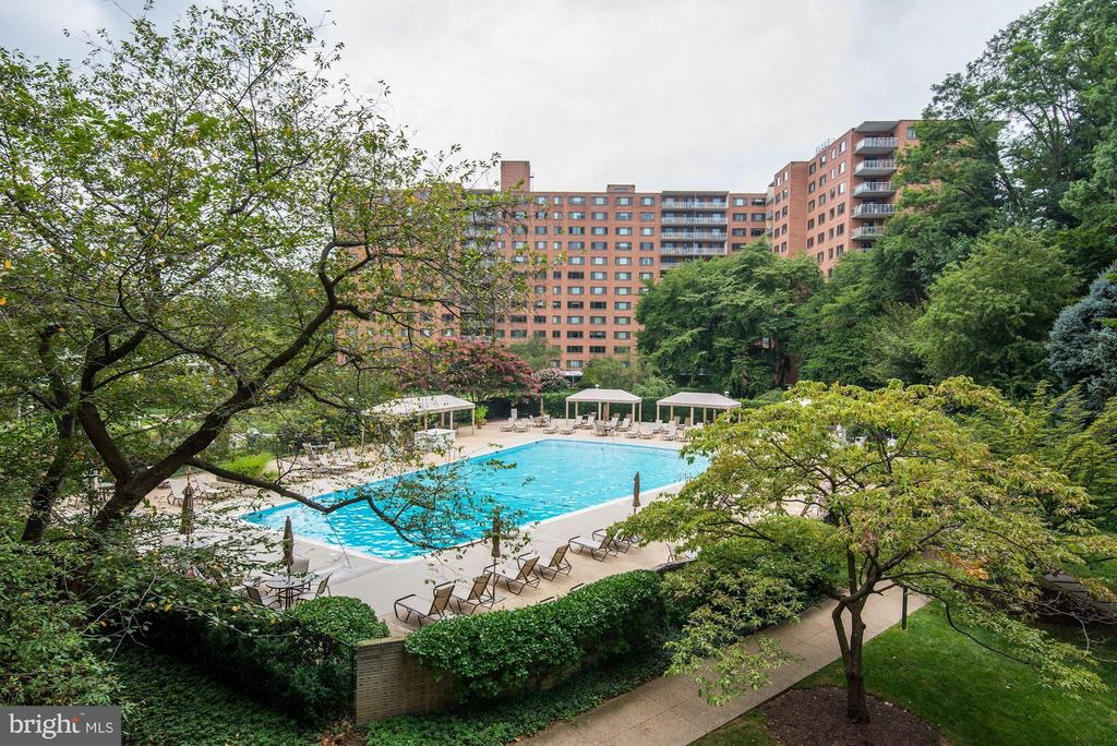 Pool and Common Grounds - 4201 CATHEDRAL AVE NW #910E, WASHINGTON