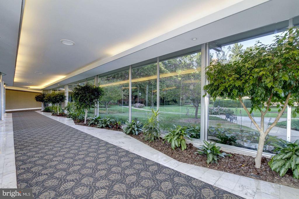 Hallways - 4201 CATHEDRAL AVE NW #910E, WASHINGTON