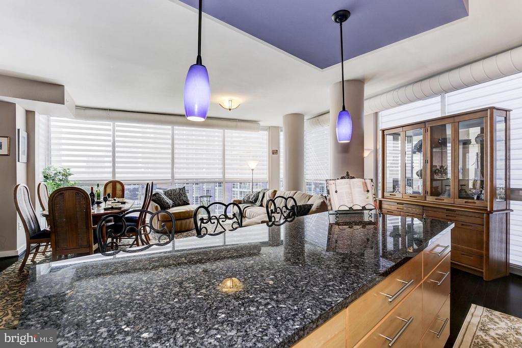 Living Room - 1025 1ST ST SE #613, WASHINGTON