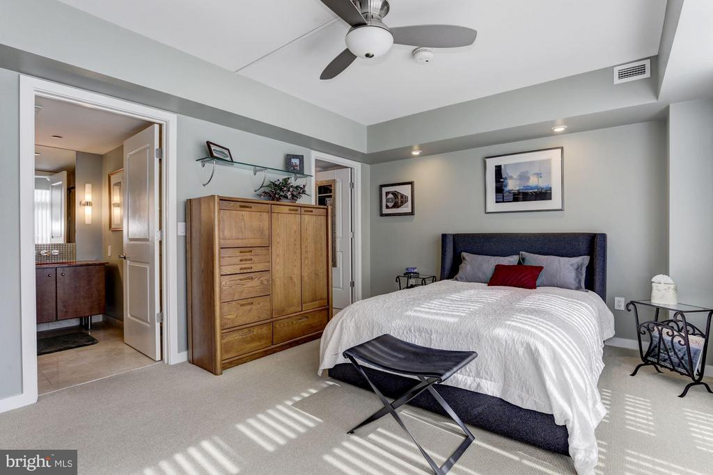 Master en suite & walk-in closet - 1025 1ST ST SE #613, WASHINGTON