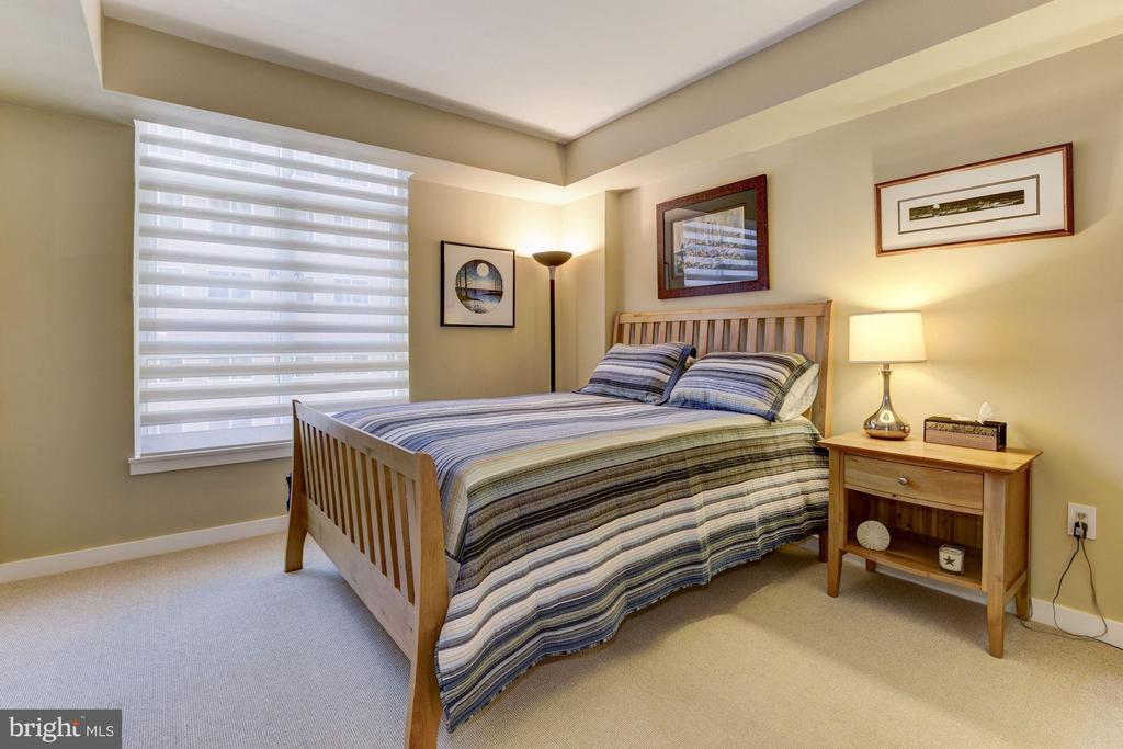 South facing, guest bedroom. - 1025 1ST ST SE #613, WASHINGTON
