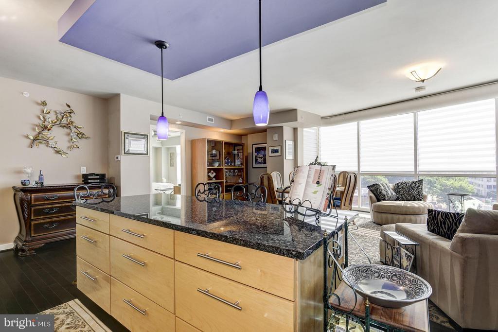 Kitchen - 1025 1ST ST SE #613, WASHINGTON