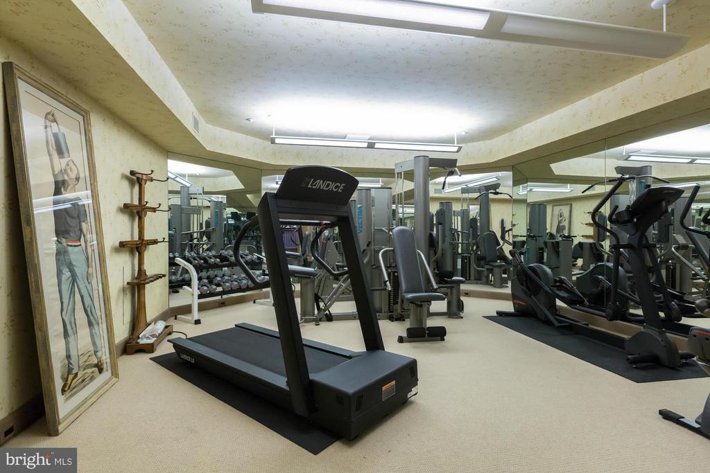 Gym - 13768 BALMORAL GREENS AVE, CLIFTON