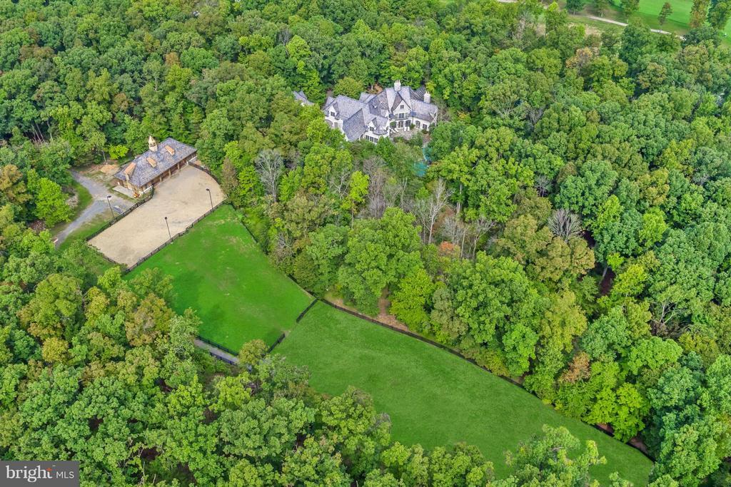 Aerial View of Balmoral - 13768 BALMORAL GREENS AVE, CLIFTON