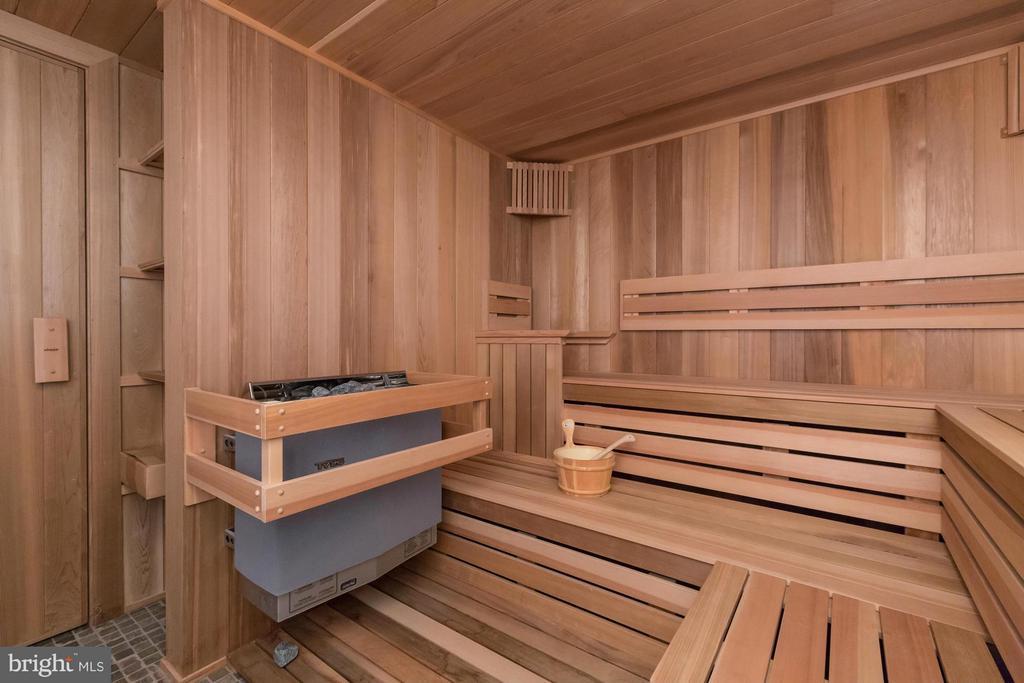 Sauna - 13768 BALMORAL GREENS AVE, CLIFTON
