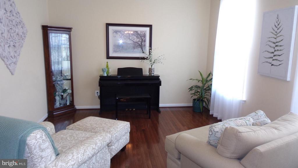 Living Room - 21038 ATHENS ST, ASHBURN