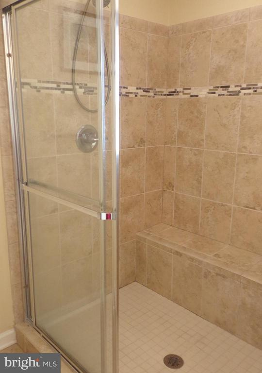 Glass Shower - 21038 ATHENS ST, ASHBURN