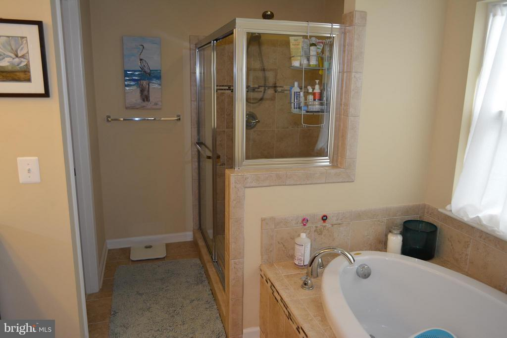 Master Bath with soaking tub and separate shower - 21038 ATHENS ST, ASHBURN