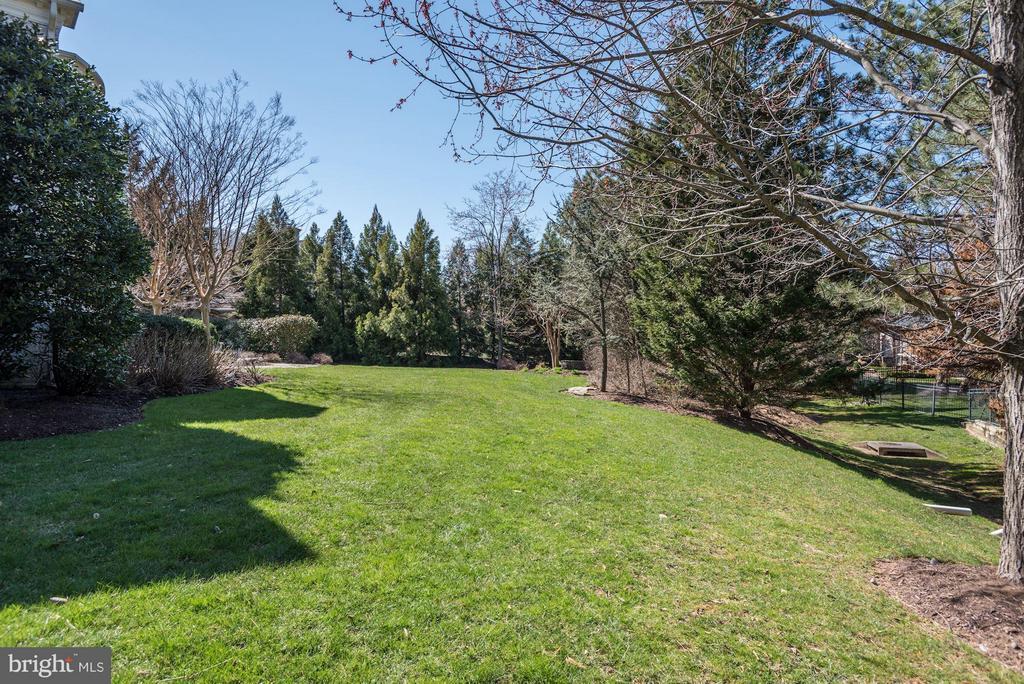 Lush Green Lawns - 1179 ORLO DR, MCLEAN