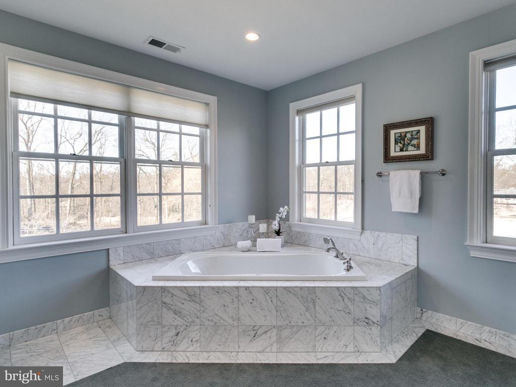 MASTER BATH W CARRERA MARBLE - 10207 HUNTER VALLEY RD, VIENNA