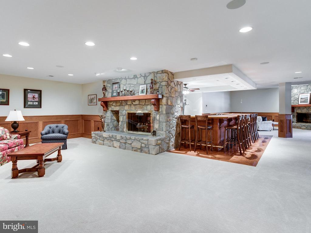 ENDLESS SPACE ON THE LOWER LEVEL . - 10207 HUNTER VALLEY RD, VIENNA