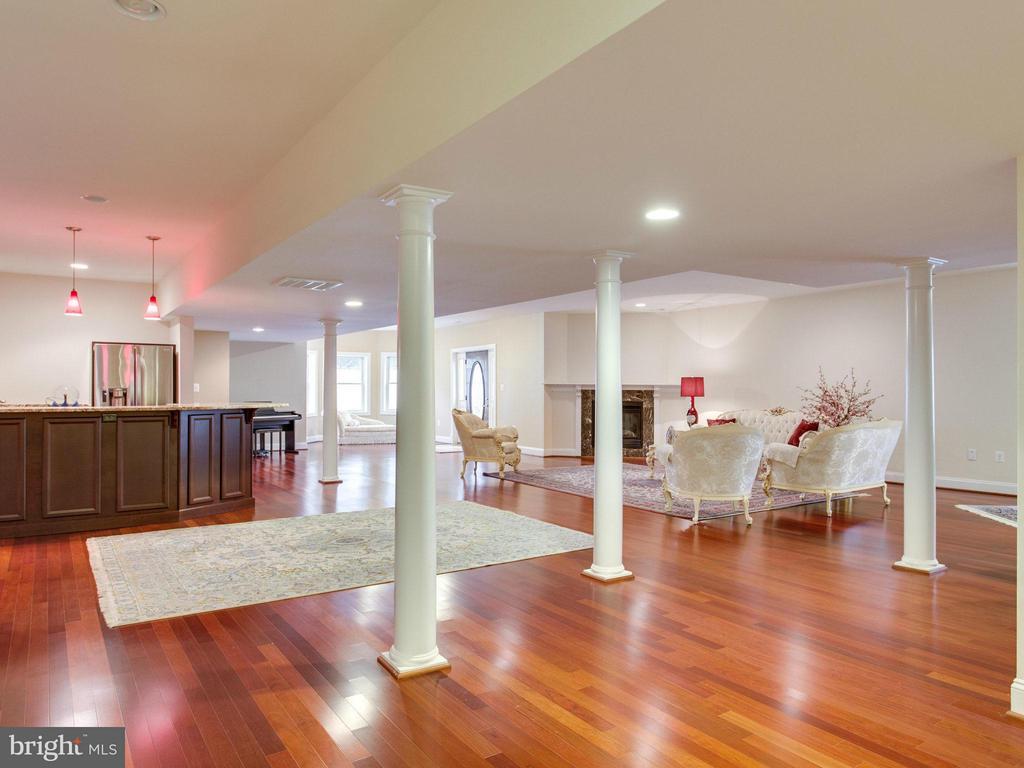 Lower Level with Entertaining Kitchen. - 2952 BONDS RIDGE CT, OAKTON