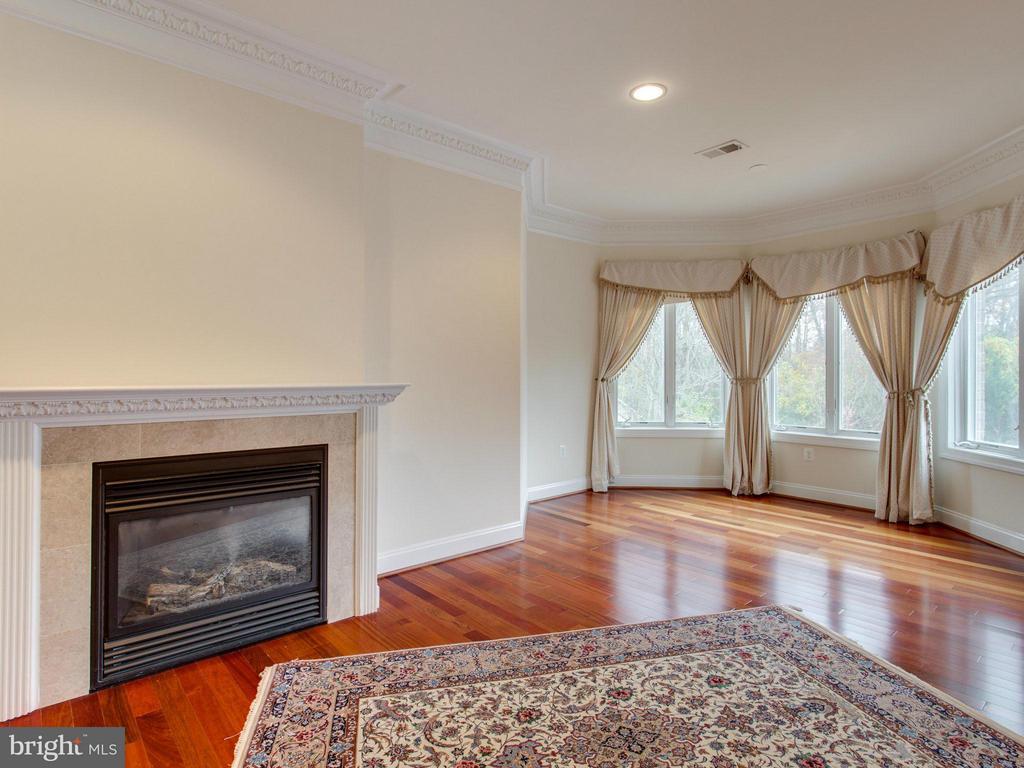 Romantic Fireplace in Master Suite. - 2952 BONDS RIDGE CT, OAKTON