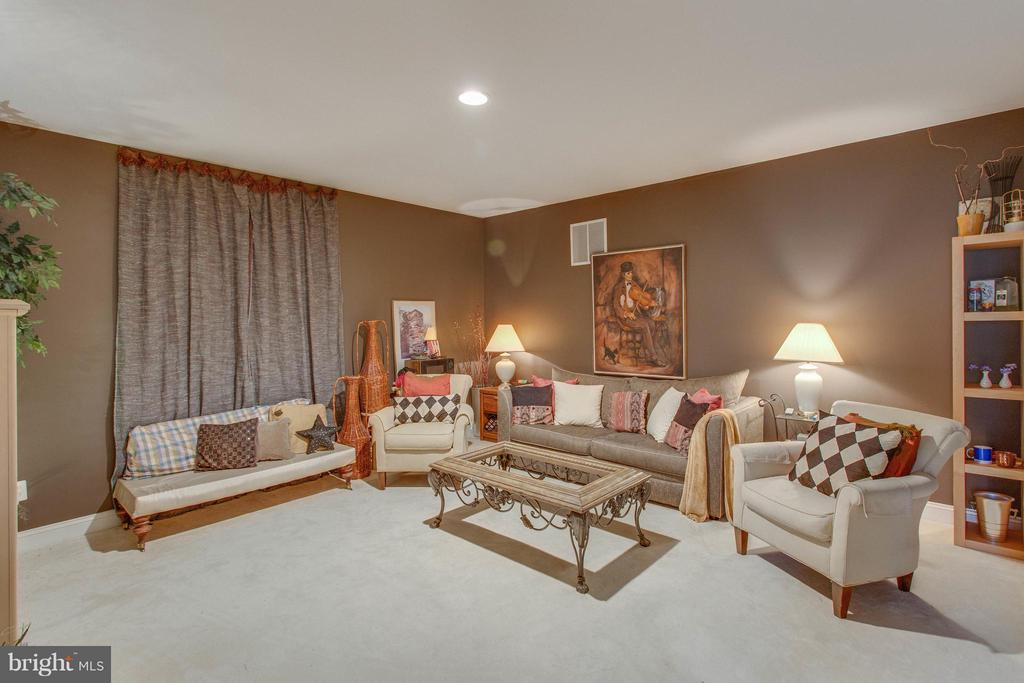 Lower Level Den would Make an Ideal Media Room. - 11600 FOREST HILL CT, FAIRFAX