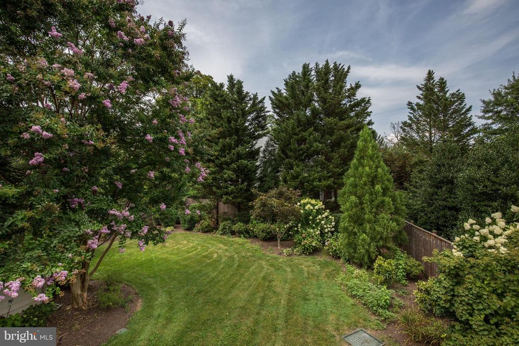 Gorgeous Rear Yard - 5107 MOORLAND LN, BETHESDA