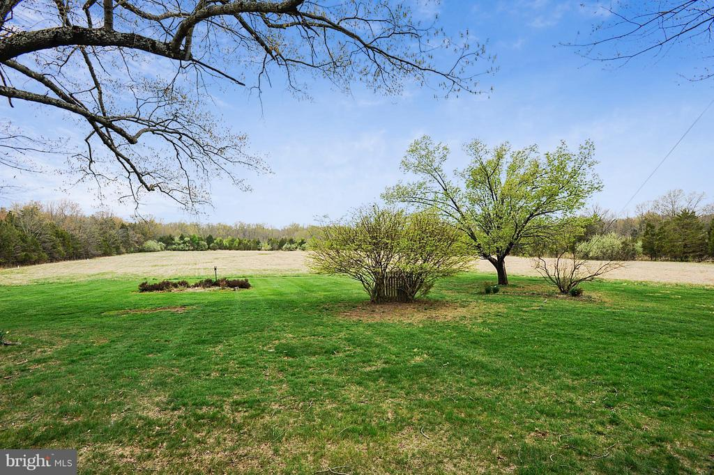 1 acre lot rear view - 15411 HERNDON AVE, CHANTILLY