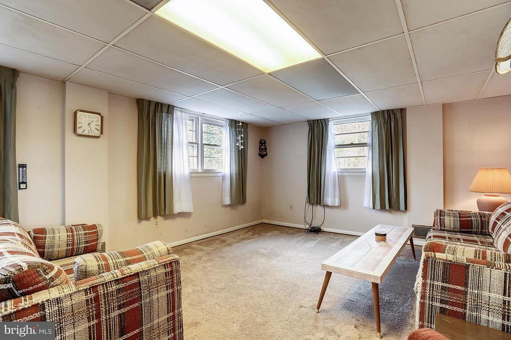 Rec room in lower level - 15411 HERNDON AVE, CHANTILLY