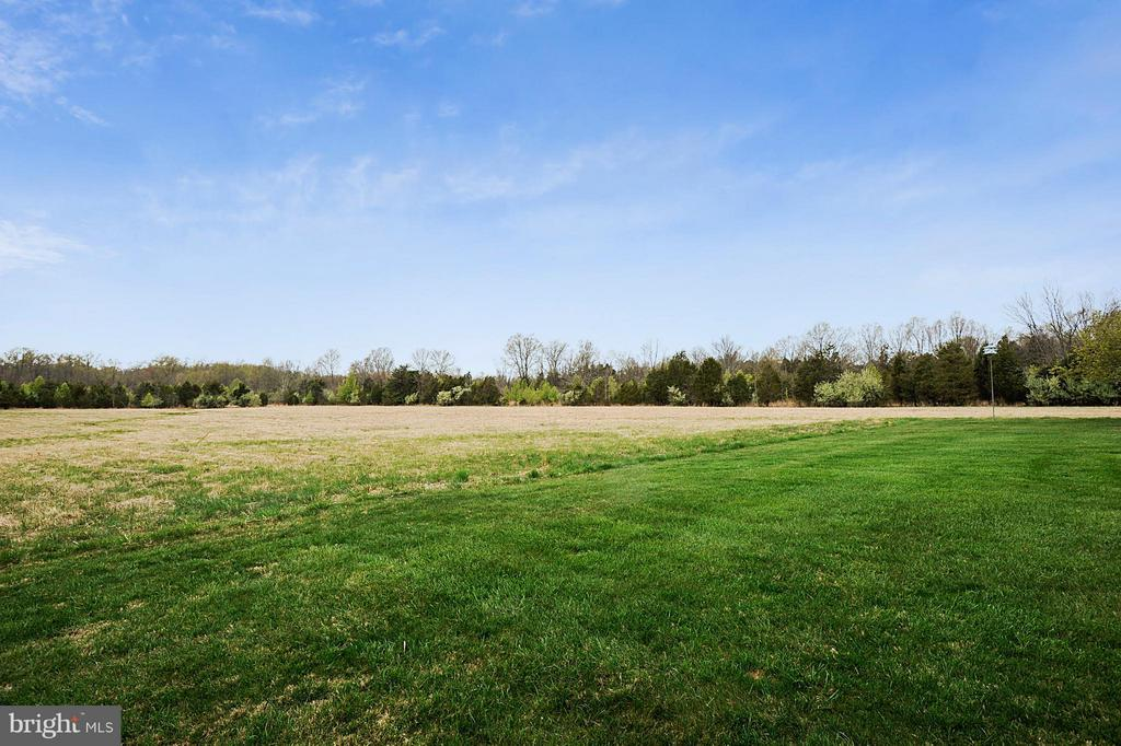 View of 5.92 acre neighboring lot - 15411 HERNDON AVE, CHANTILLY