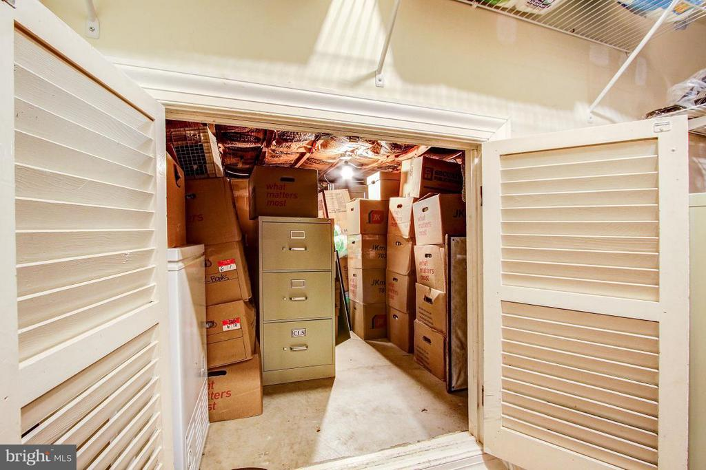 Lower level additional storage - 424 PRINCESS ST, ALEXANDRIA