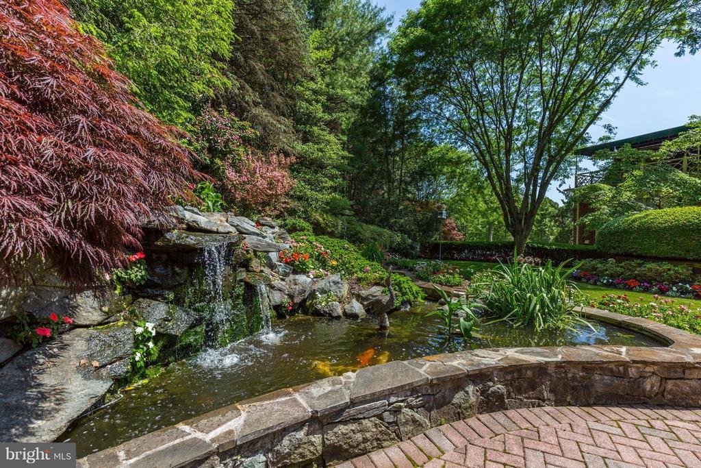 Koi Pond/Water Feature - 11617 HIGHLAND FARM RD, POTOMAC
