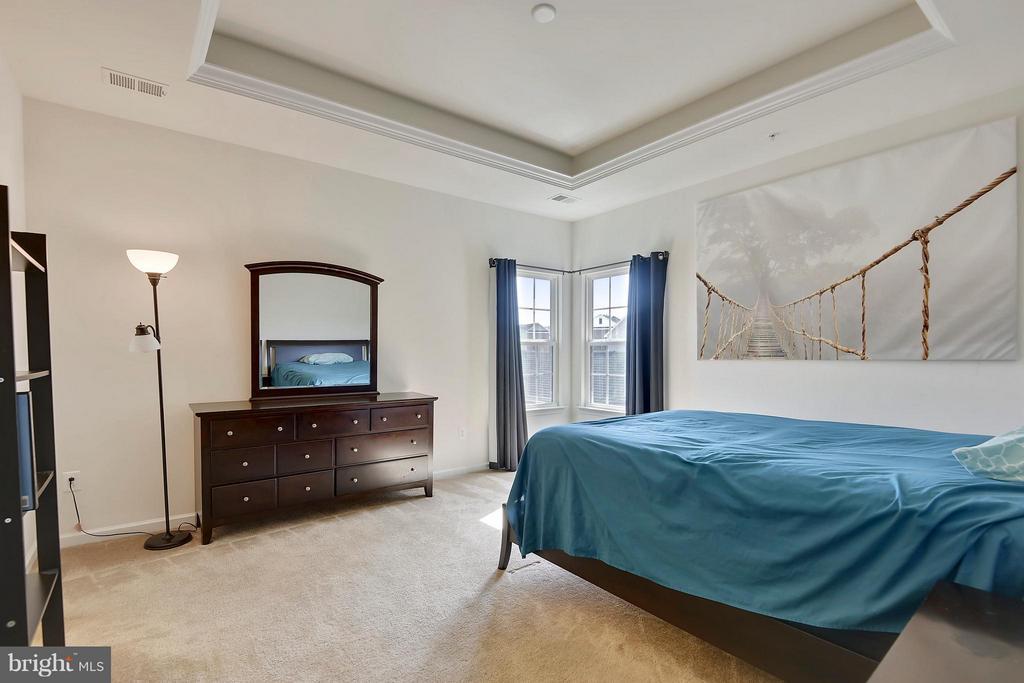 Master Bedroom with tray ceiling - 22504 HEMLOCK HILLS PL, CLARKSBURG