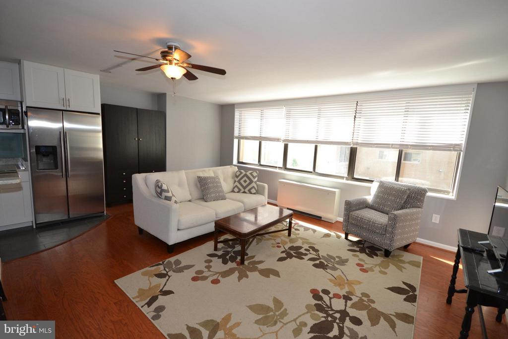 Spacious Living Room with Lots of Light! - 2030 F ST NW #201, WASHINGTON