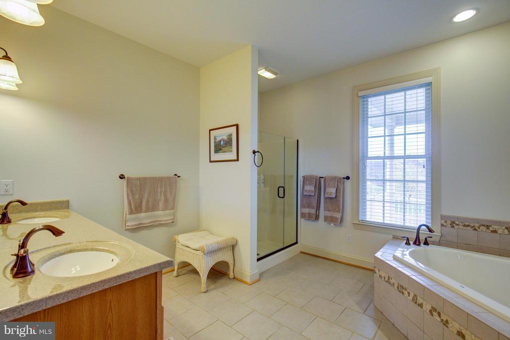 Soaking tub and walk in shower in master - 121 GRANVILLE CT, WINCHESTER