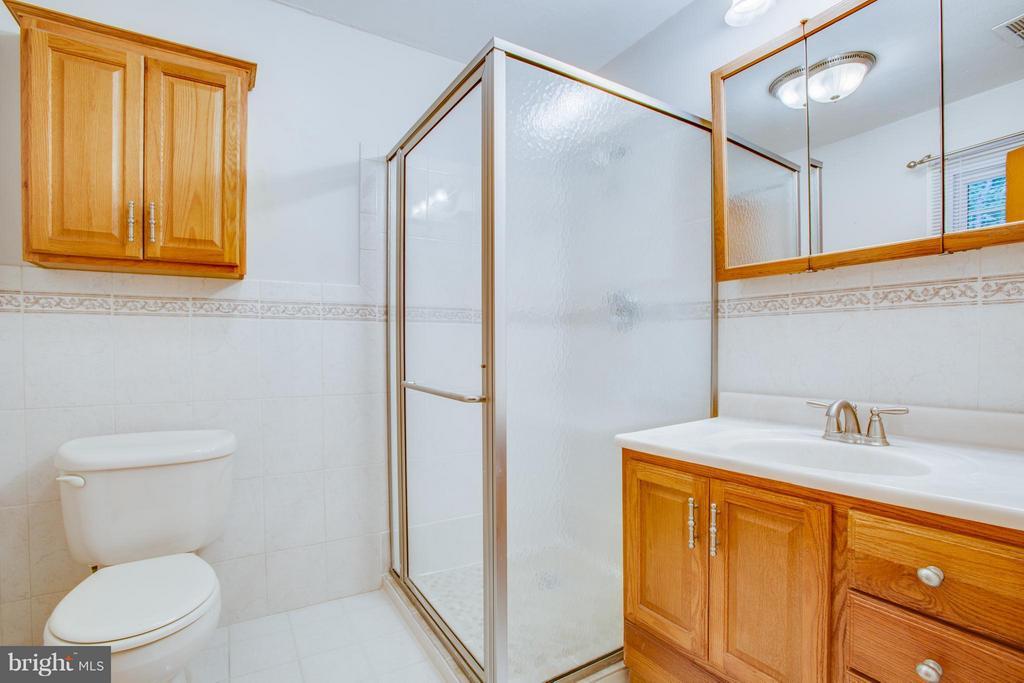 Bath (Master) - 7225 COURTHOUSE RD, SPOTSYLVANIA