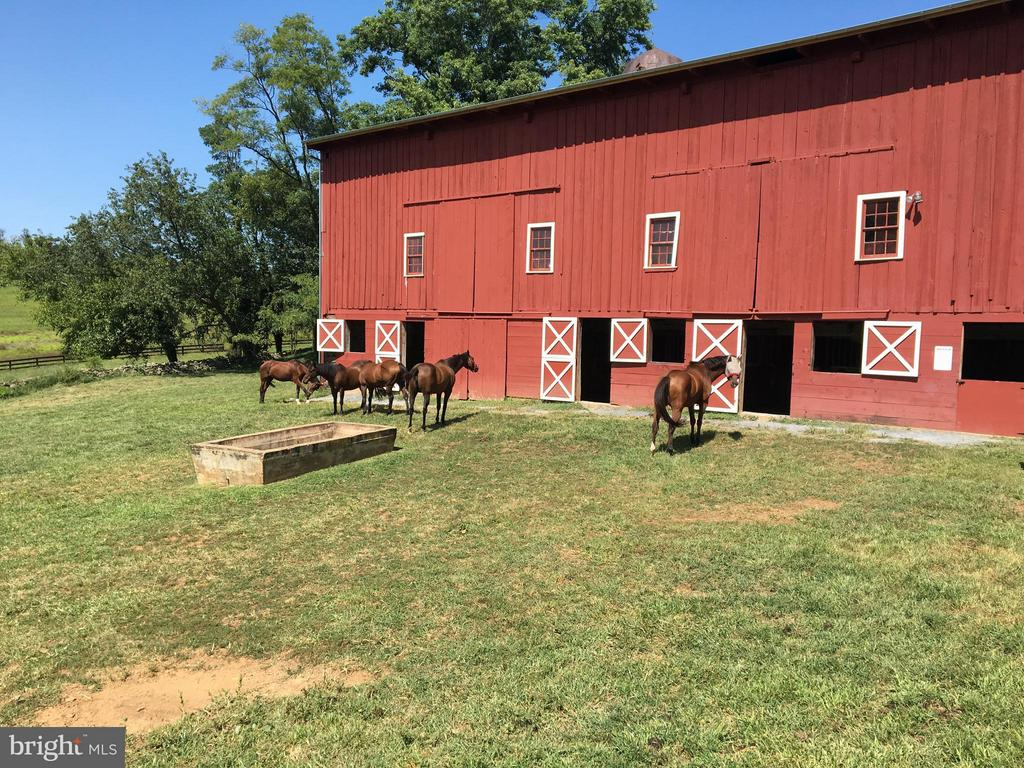 6 large stalls inside for the horses. - 35676 SNICKERSVILLE TPKE, PURCELLVILLE