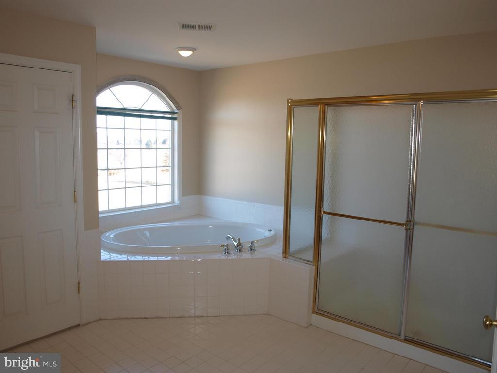 Bath (Master) - 38772 BOCA CT, WATERFORD