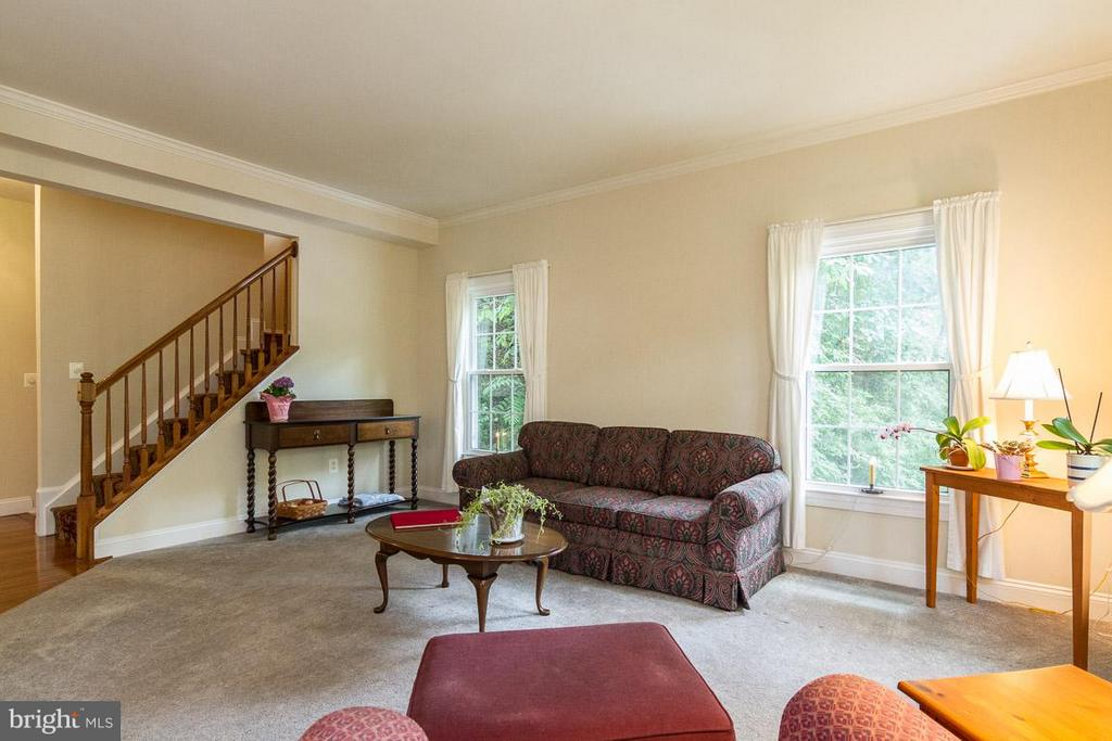 Living Room with ton of natural light - 131 WASHINGTON ST, OCCOQUAN