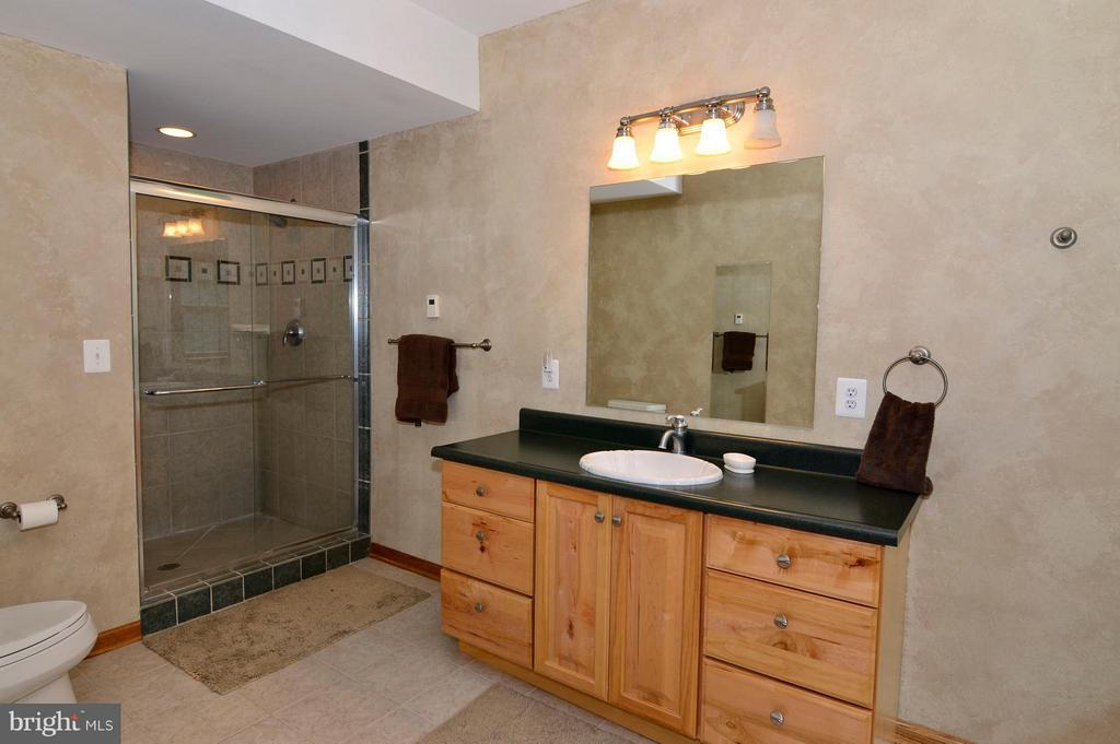 Lower Level Master Bath - 3821 CHANTILLY RD, CHANTILLY