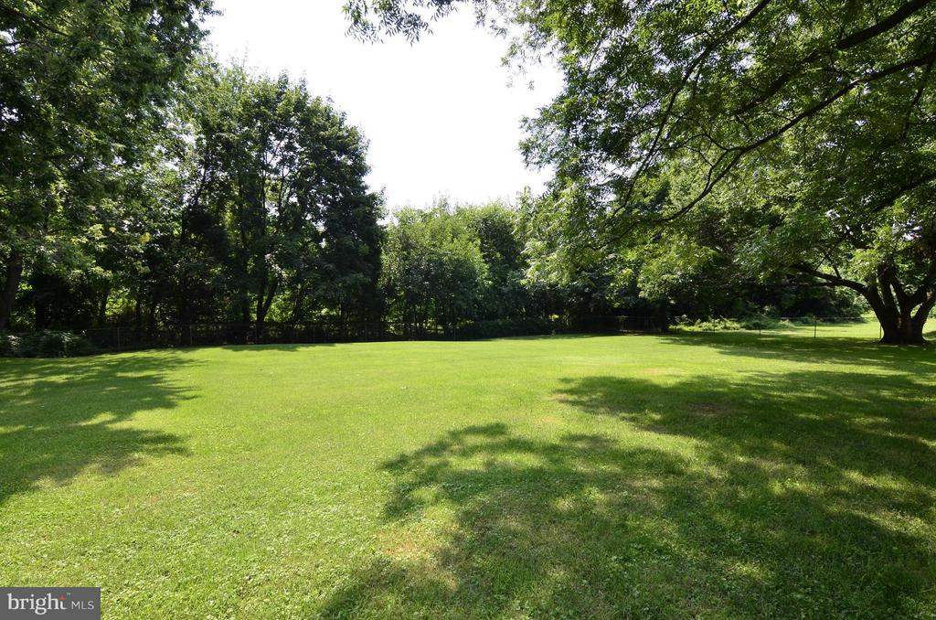 Large Flat Backyard - 3821 CHANTILLY RD, CHANTILLY