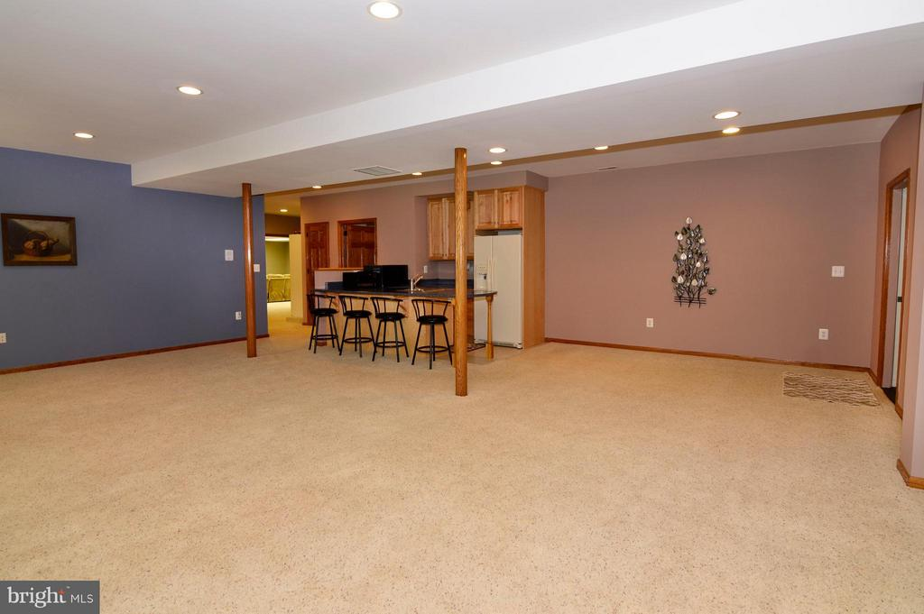 Large Lower Level - 3821 CHANTILLY RD, CHANTILLY