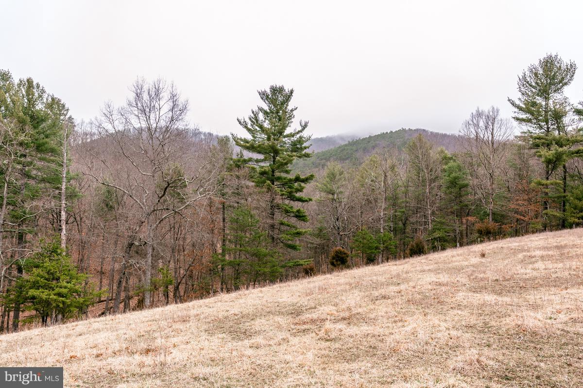 Land for Sale at 0 Little Dry River Rd Fulks Run, Virginia 22830 United States