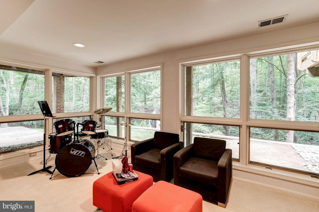 Lower Level Recreation Room - 740 POTOMAC RIVER RD, MCLEAN