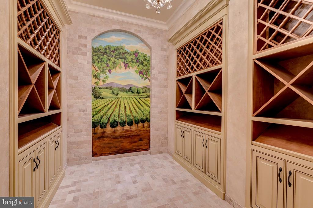 Perfectly Appointed Wine Cellar - 300 RIVER BEND RD, GREAT FALLS