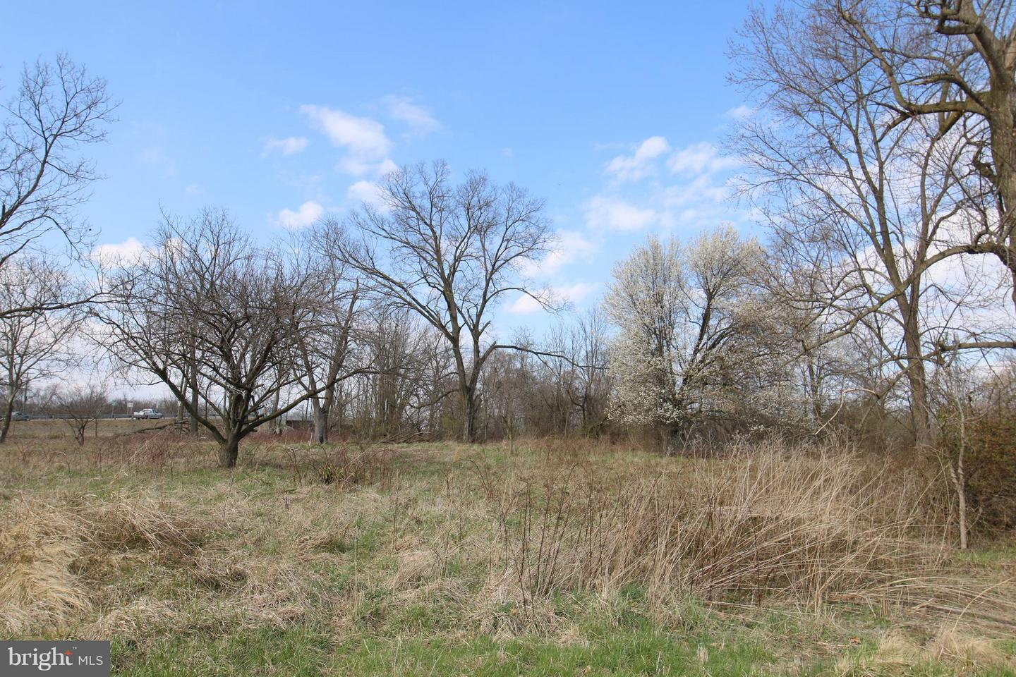 Land for Sale at 310 Raleigh Extended St Martinsburg, West Virginia 25401 United States