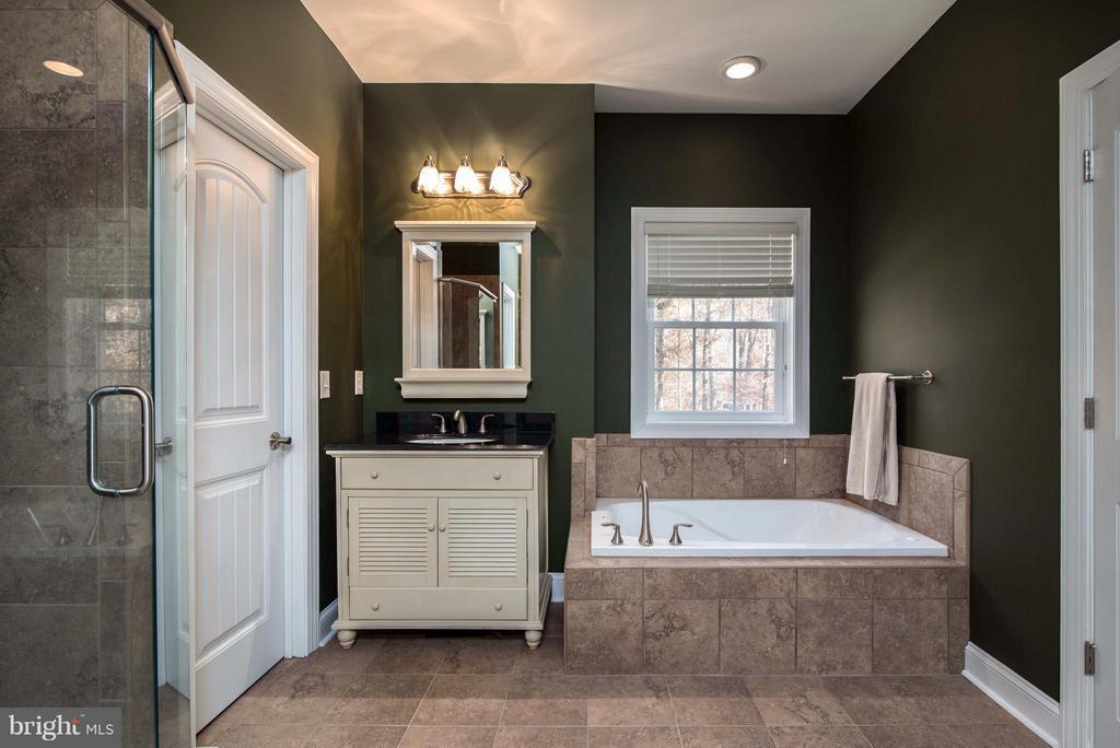 Luxury master en-suite w/huge walk in shower - 14800 COMFORT LN, MINERAL