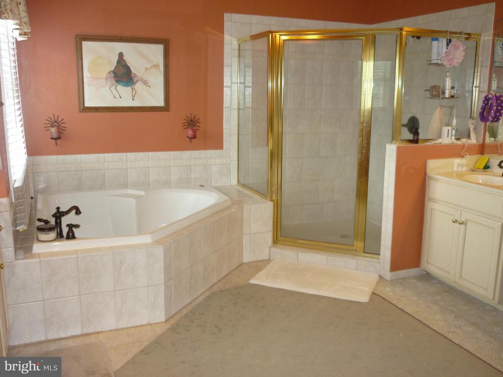 Bath (Master) - 16621 ELK RUN CT, LEESBURG