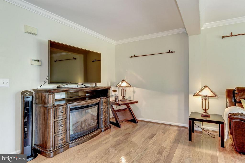 Family Room - 44885 GROVE TER, ASHBURN