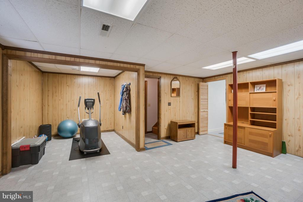 Basement offers more space for living and storage - 2310 LAKEVIEW PKWY, LOCUST GROVE