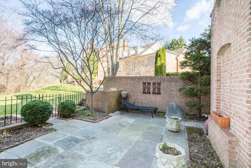 Large slate gated patio - 3827 N. TAZEWELL ST, ARLINGTON